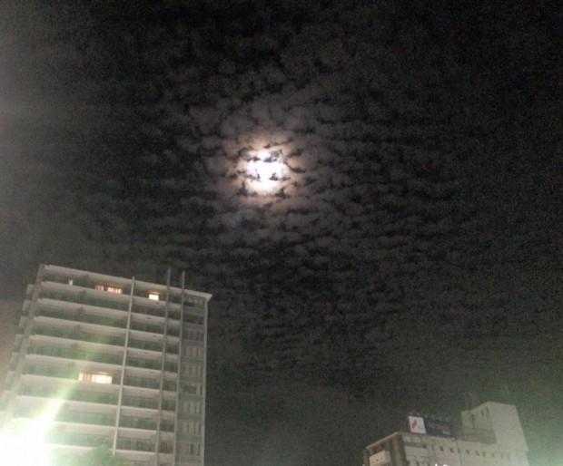 平岡ブログ 10_6 06