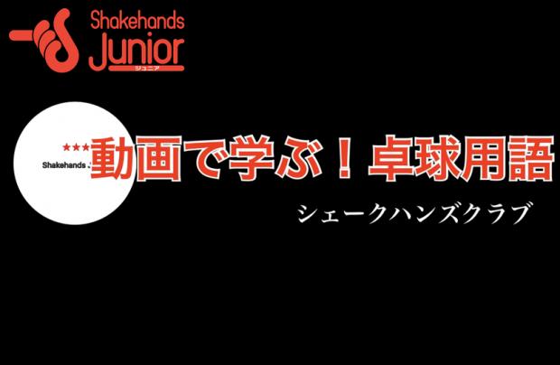 【ジュニア】3スターボールについて_表紙